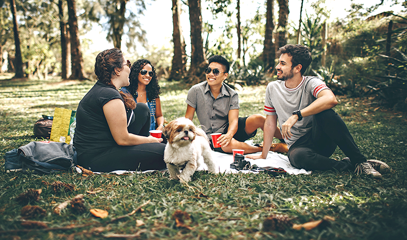 Picnic with friends and a dog